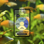 Seachem Ammonia Alert [12 mies] - test na amoniak