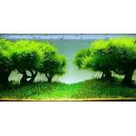 Seachem Flourish Advance [250ml] - stymulator wzrostu