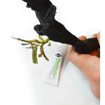 Seachem Flourish Glue [2x4g] - klej do epifitów