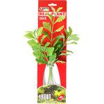 SHINNERSIA RIVULARIS 12 [31cm] - Rośliny z miękkiego, tkanego materiału