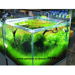 Substrat Ferka Aquabase [250g]
