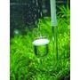 Szklany dyfuzor CO2 [20mm] - z przyssawką