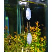 Szklany dzwon CO2 [9.5cm] - dla koneserów