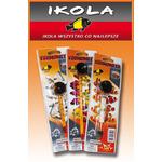 Termometr precyzyjny IKOLA - mały