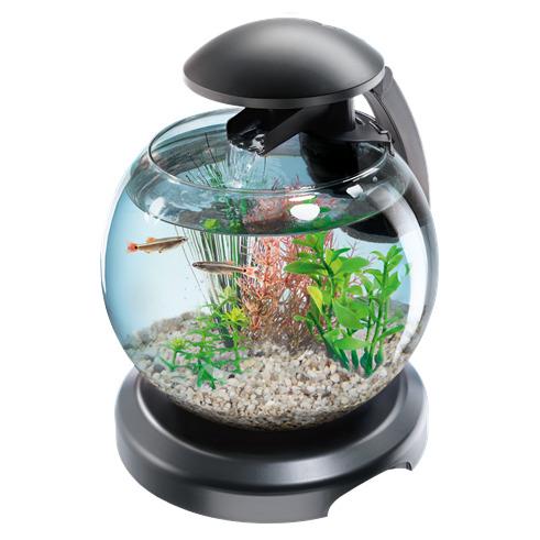 Tetra tetra cascade globe 6 7l zestaw kula filtr for Filtre petit aquarium