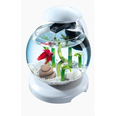 Tetra Cascade Globe White - Szklana kula z i oświetleniem