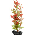 Tetra DecoArt Plant L Red Ludwigia