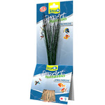 Tetra DecoArt Plantastics Premium Hairgrass [24cm]