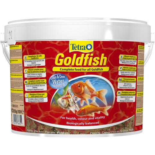 Tetra Goldfish [10l]