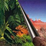 Tło dwustronne JUNGLE + DESERT [80x40cm]