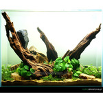 Tło matowe (mist) 120x50cm