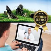 Usługa konsultacji online + prowadzenie [1 miesiąc, 4 raporty]