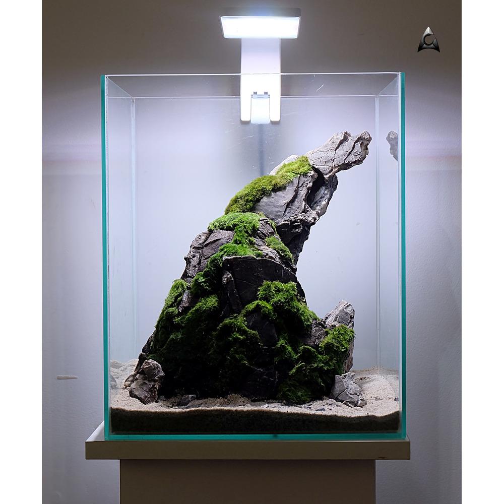 Wyprzedane: Gotowa aranżacja hardscape nr 020 (30x30x35cm) - ze zdjęcia + rośliny