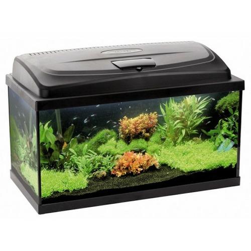 Zestaw akwariowy Aquael Classic BOX 40 LT - owal