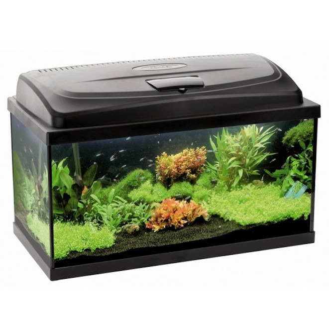 Zestaw akwariowy AquaEL Classic BOX 40 PAO LT