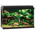 Zestaw akwariowy Juwel Primo 70 - kolor czarny