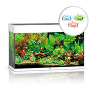 Zestaw akwariowy JUWEL Rio 125 (HeliaLux LED) - wybierz kolor