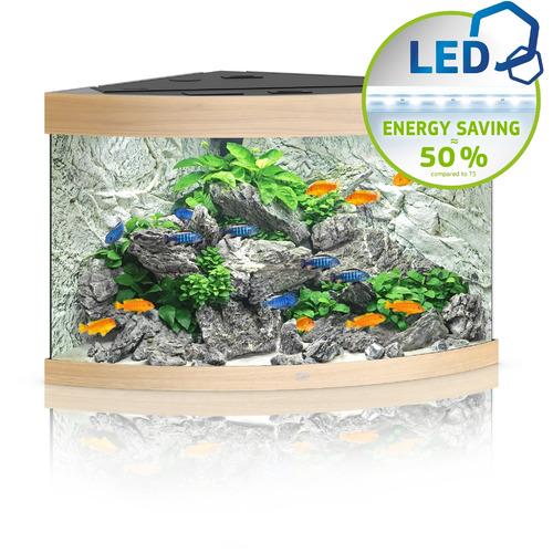 Zestaw akwariowy JUWEL Trigon 190 (LED) - jasne drewno (dąb)