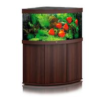 Zestaw akwariowy JUWEL Trigon 350 (LED) + SZAFKA - ciemne drewno