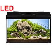 Zestaw akwariowy Startup 40 LED Expert (czarny)