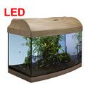 Zestaw akwariowy Startup 60 AP LED (buk)