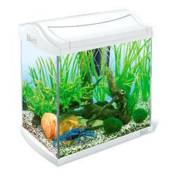 Zestaw akwariowy Tetra AquaArt Crayfish Complete Set 30l, kolor biały- dla krewetek i krabów