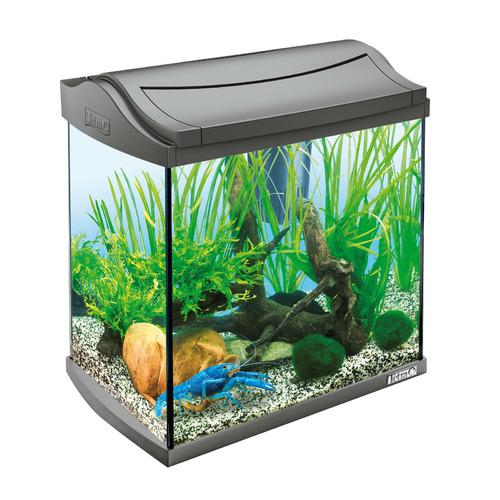 Zestaw akwariowy Tetra AquaArt Crayfish Complete Set 30l, kolor czarny - dla krewetek i krabów