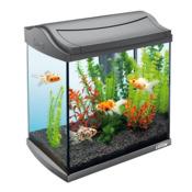 Zestaw akwariowy TETRA AquaArt LED Goldfish anthracyt [30l]