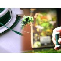 Zestaw aquadesignera SET-1:  Nić + taśma do mocowania roślin
