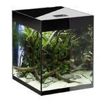 Zestaw AquaEL Glossy Cube (50x50x63cm, 135l)