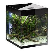 Zestaw AquaEL Glossy Cube (50x50x63cm, 135l) - czarny