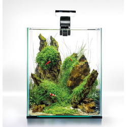 Zestaw Aquael Shrimp Set Day & Night [10l] - czarny