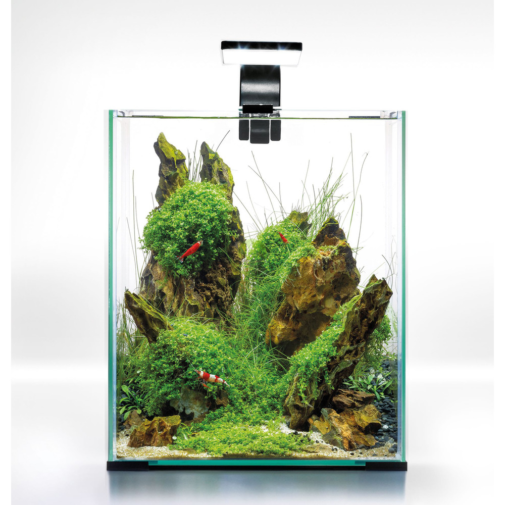 Zestaw Aquael Shrimp Set Day & Night [20l] - biały