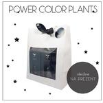 Zestaw nawozów QualDrop POWER COLOR PLANTS [3x125ml]
