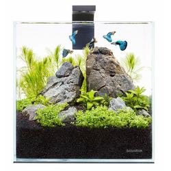 Zestaw OptiWhite Aqualighter Pico set - 5 litrów