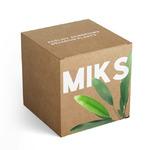 Zestaw roślin akwariowych MIX 5 - rośliny czerwone C