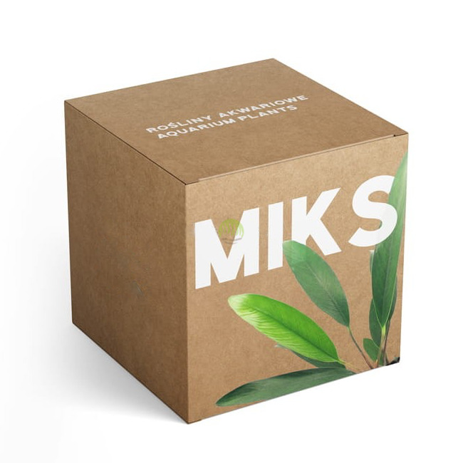 Zestaw roślin akwariowych MIX 5 - rośliny średnie (15-25cm) C