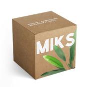 Zestaw roślin akwariowych MIX 5 - rośliny szerokolistne C