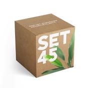 Zestaw roślin akwariowych SET 45