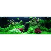 Zestaw roślin - akwarium 096 (300l) - 14 szt.