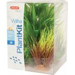 Zolux Dekoracja roślinna PLANTKIT WIHA model 2