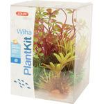 Zolux Dekoracja roślinna PLANTKIT WIHA model 4