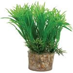 Zolux Roślina mała z zestawu nr 3