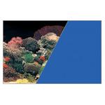 Zolux Tło akwariowe dwustronne 40 x 60 cm koralowiec/niebieskie