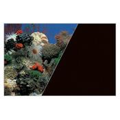Zolux Tło akwariowe dwustronne 60 x 120 cm koralowiec/czarne